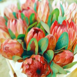Ran, Fleur de Thé
